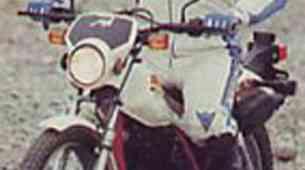 Honda reflex - TLR 200