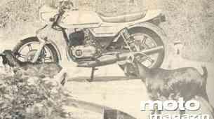 Montesa Crono 350