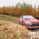 Citroën lahko naslov med konstruktorji osvoji le še po čudežu. (foto: moštva)