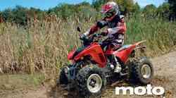 Honda TRX 250