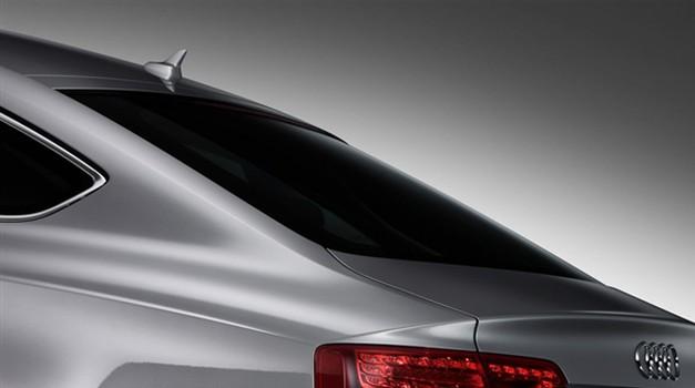 Audi v Sloveniji uspešno (foto: Audi)