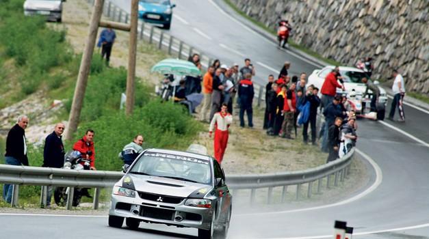 Gorske dirke: 13. Petrol Sevnica 2010 (foto: Saša Kapetanovič)