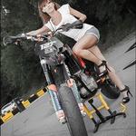 Miss Sponsor (foto: Razni)