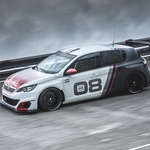 Peugeot 308 Racing Cup: pripravljen na dirke (foto: Peugeot)