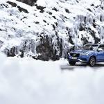 Reportaža: Volvo Winter Drive; Vse najboljše! (foto: Volvo)