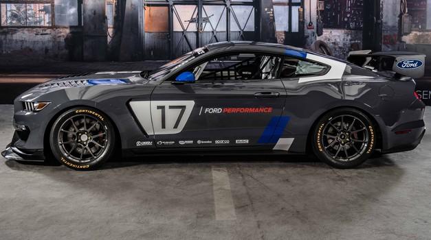 Mustang GT4, Fordov globalni dirkalnik (foto: Ford)