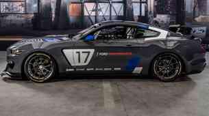 Mustang GT4, Fordov globalni dirkalnik