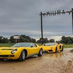 Lamborghini Miura na obisku pri domačih bikih (foto: Lamborghini)