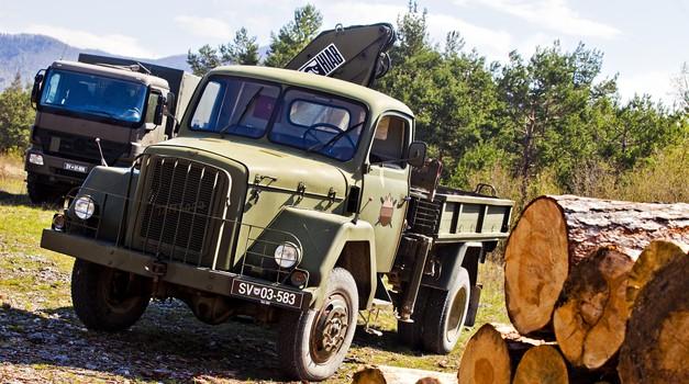 To je najstarejše vozilo v službi Slovenske vojske: TAM 5000 letnik 1974, po domače Dojc (foto: Saša Kapetanovič)