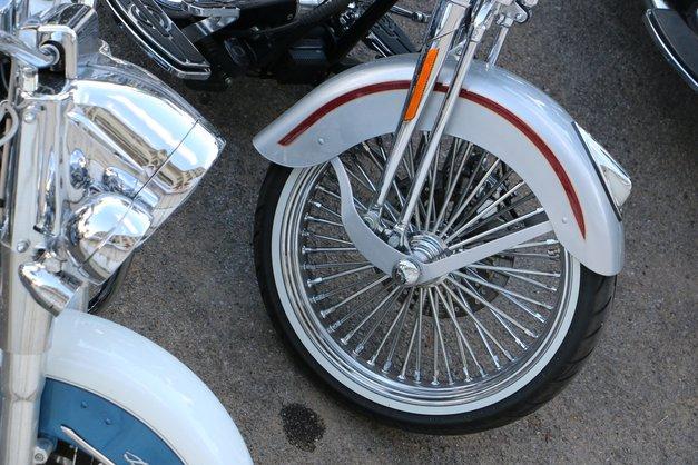 Foto: ko se v Palermu zberejo lastniki Harley-Davidsonov