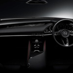 Mazda v Tokiu kar z dvema študijama (foto: Mazda)
