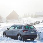 Test: Škoda Karoq 2.0 TDI 4x4 DSG 150 KM Style (foto: Saša Kapetanovič)