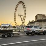 Land Rover na pomoč pri reševanju nosorogov (foto: Newspress)