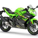 Kawasaki mulce postavlja pred najtežjo odločitev: Ninja 125 ali Z125? (foto: Kawasaki)