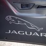 Video: Jaguar se z reli F-typom klanja legendarnemu modelu XK-120 (foto: Jaguar)