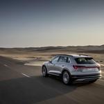 Čistokrvni Audi (foto: Audi)