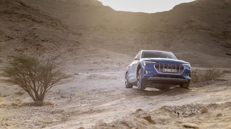 Novo v Sloveniji: Audi E-tron (foto: Audi)