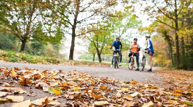 Nova akcija AVP, tokrat pod drobnogledom kolesarji (foto: Profimedia)