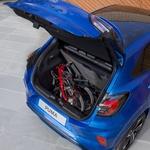 Ford s pomočjo kupcev obuja model Puma (foto: Ford)