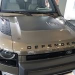 Novo v Sloveniji: Land Rover Defender (foto: Tomaž Porekar)