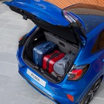 Novo v Sloveniji: Ford Puma (foto: Ford)