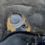 Glodavci so nevšečnost, ki jo le stežka preprečimo Nevarnost iz kanalizacijskih jaškov (foto: Center Mobilnosti Špan)