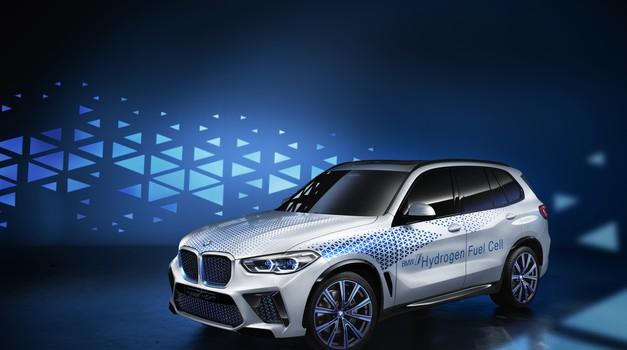 Na vodik do 500 kilometrov daleč - še v tem desetletju (foto: BMW)