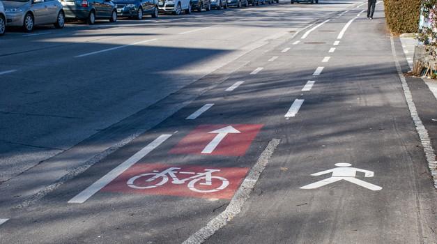 Raziskava pokazala, kateri udeleženci na cesti so najmanj pazljivi (foto: Jure Šujica)