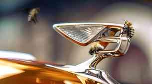 Bentley v prihodnjih letih ukinja bencinske motorje!