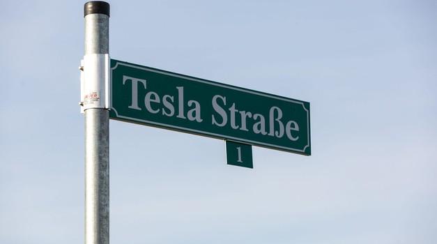 Nemško sodstvo zaustavilo gradnjo nove tovarne podjetja Tesla, tu je razlog (foto: Profimedia)