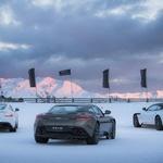 Šole zimske vožnje: Poučna zabava (foto: Vaughan Brookfield)