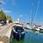 Cupra Formentor - toda tokrat na valovih! (foto: Matjaž Korošak)